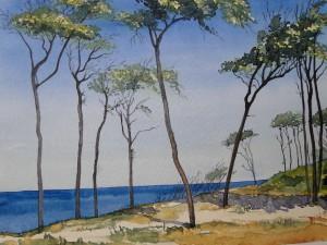Ostsee Darßer Weststrand