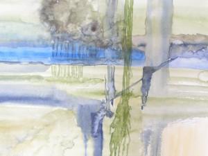 Impression Wald und Wasser