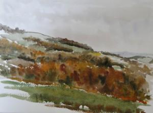 Herbstwald  über Sommerau  29 x 38 cm