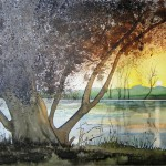 Sonnenuntergang an der Havel